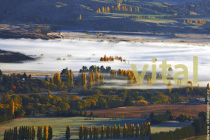 Morning_Autumn_mist_over_Albertown_near_Wanaka_and_Hawea_Central_Otago