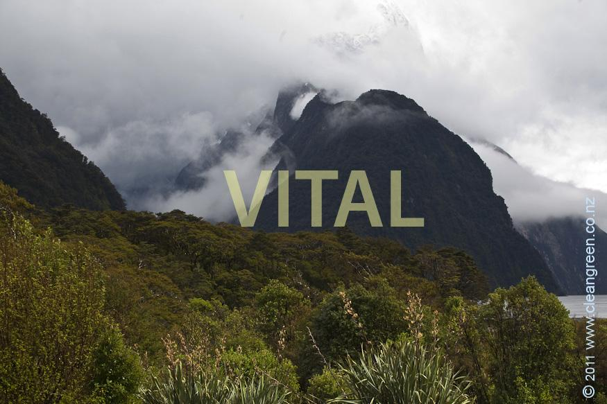 Sinbad Gully & Mitre Peak Fiordland National Park New Zealand Inc