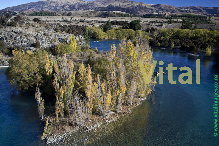 Switchback Feature on the Upper Clutha River at the Devil's Nook Luggate Central Otago at the Confluence with Luggate Creek. Contact Energy has plans for a hydroelectric dam below here which would destroy this feature in the interest of economic development and shareholder profits.