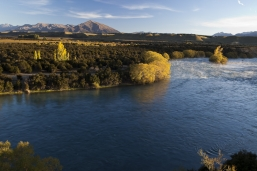 Autumn_in_Central_Otago_the_mighty_Clutha_River_above_the_red_bridge_at_Luggate_Central_Otago_near_Wanaka_Airport