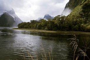 View_from_the_Boat_Harbour_Milford_Sound_Fiordland
