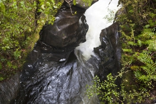 The_Chasm_on_the_Cleddau_River_near_Milford_Sound_in_Fiordland_National_Park_South_Island_New_Zealand