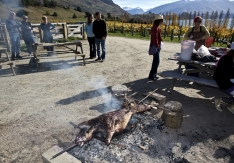 Harvest_Party_at_Rippon_Vineyard_Lake_Wanaka_Central_Otago_to_Celebrate_the_wonderful_Vintage_of_2010_Star_Wines_will_be_the_Rippon_2010_Pinot_Noir_,_Rippon_201