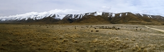 Photo_Photograph_of_Central_Otago_Landscape___Panorama_of_Hawkdun_Range_Hawkduns_from_near_the_Falls_Dam_in_the_Upper_Manuherikia_Valley_near_St_Bathans_and_Blu