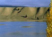 Texture_created_by_tussock_growing_on_fluvial_outwash_terrace_named_the_sugarloaf_alongside_Lake_Dunstan_near_Lowburn_Cromwell_Central_Otago